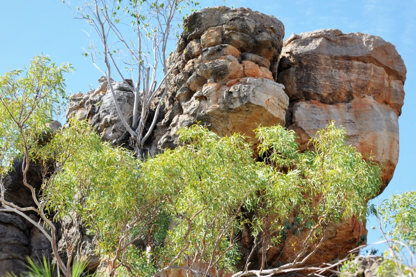 Jatbula Trail- Northern Territory Adventure