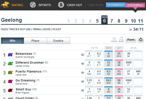Betfair horse racing - exchange