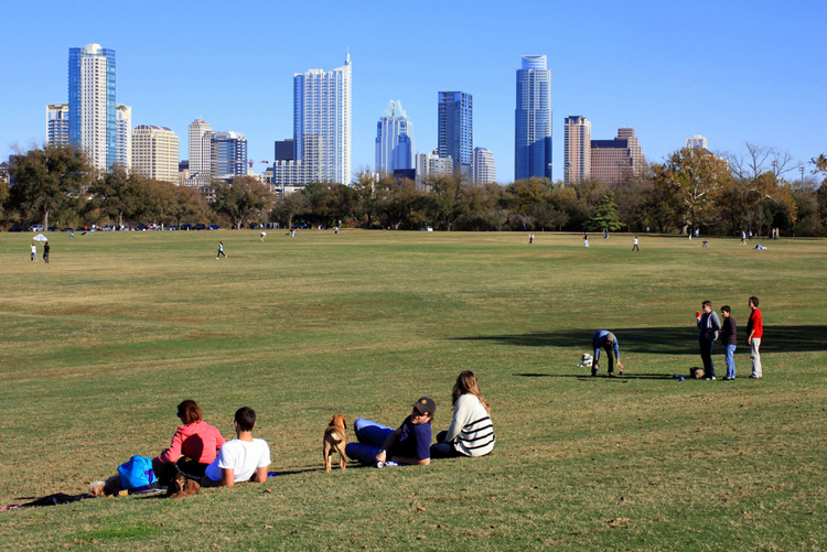 zilker park lawn dog field grass