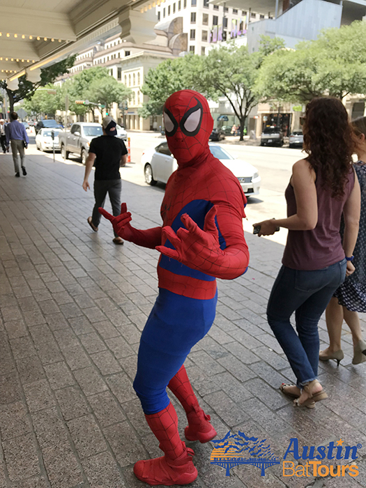 Spider-man; spiderman; spider man; Congress Avenue; downtown; Austin; Texas; blog; blog post; austin bat tours; austinbattours.com; www.austinbattours.com