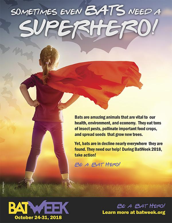 Sometimes even Bats need a Superhero!
