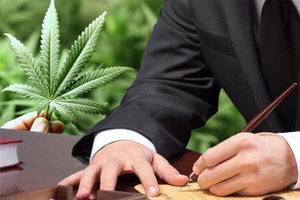 Marijuana Laws, Austin Marijuana Laws, Marijuana Lawyer Austin, Marijuana Attorney Austin