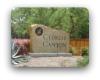 Cypress Canyon Cedar Park TX Neighborhood Guide