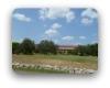 Vineyard Ridge Driftwood TX Neighborhood Guide