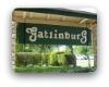 Gatlinburg Pflugerville Neighborhood Guide