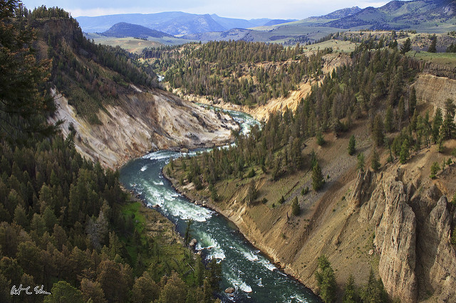 After Yellowstone, In Search of Nature