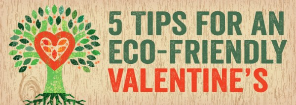 5 Tips for an Eco-Friendly Valentine's Day | AustinTexas ...