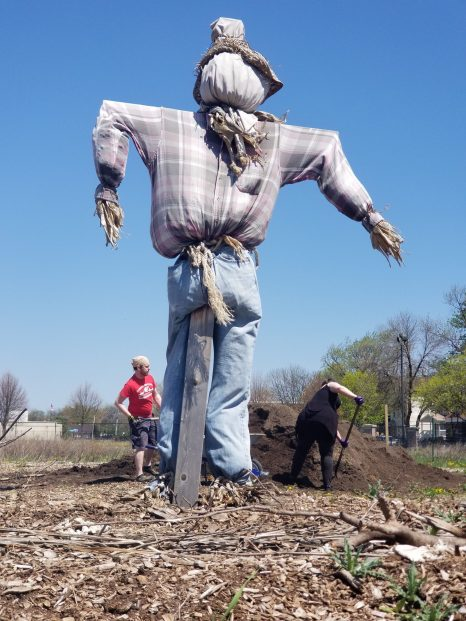 Digging in the dirt: Neighbors and students began work at Chicago Farm Lab in the first weekend of May. Farm Lab organizer Marnie Ware says fundraising efforts are ongoing for the 2-acre urban farm. | TIMOTHY INKLEBARGER/Staff