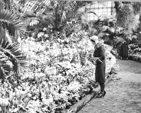 A woman at the 1929 Spring Flower Show