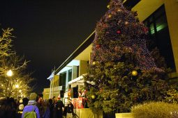 The big tree was lit after the parade arrived at 15th District headquarters. (DAVID PIERINI/Staff Photographer)