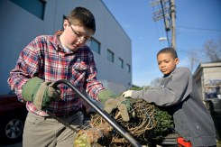 Andrew Brown, left, 13, of Lake Zurich, and Elijah Walls, 11, of Prospect Heights, clean up a tree before loading it into a family's vehicle on Saturday, Dec. 2, during a Christmas Tree giveaway at By The Hand Club For Kids on Laramie Avenue in Austin. | ALEXA ROGALS/Staff Photographer