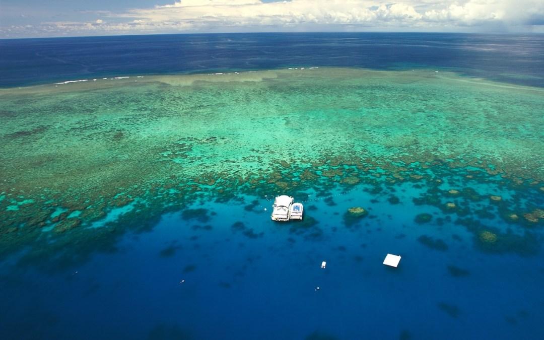 Velký bariérový útes potápění v Austrálii