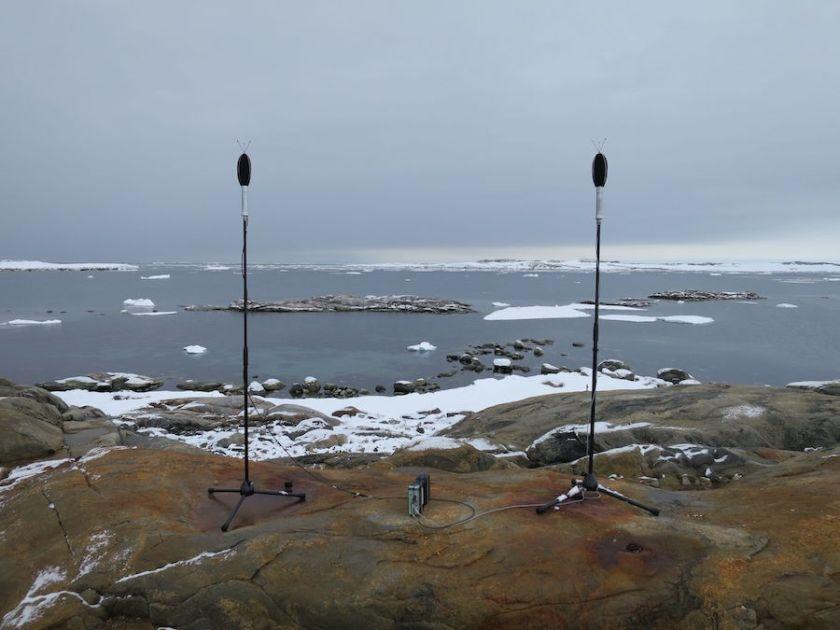 Белый шум Антарктики — полярные силы перкуссии