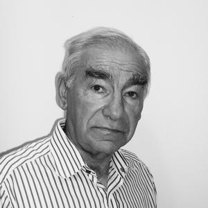 Владимир Дубоссарский