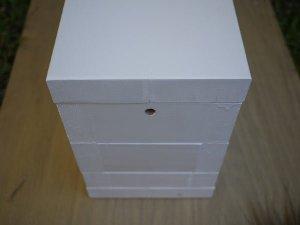 Native-bee-hive-5-