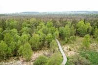 Schwarzes-Moor-Rhoen-10