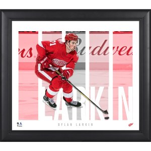 Detroit Red Wings Dylan Larkin Fanatics Authentic Framed 15'' x 17'' Player Panel Collage
