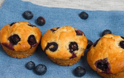 Blueberry Protein Muffin Recipe