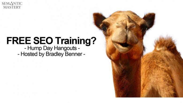 HDB FB con cammello