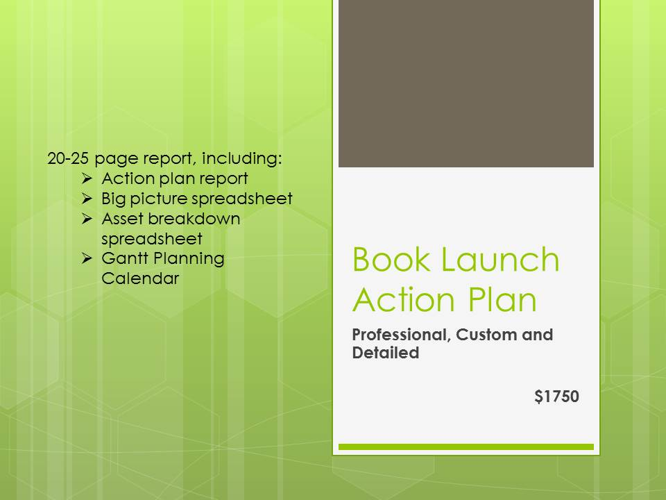 Book Launch Action Plan Author Planet