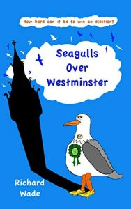 Seagulls over Westminster by Richard Wade