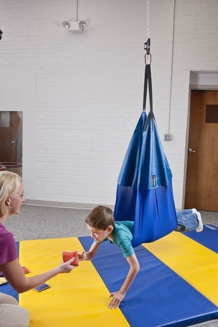Adult Sling Swing w/Safety Snap