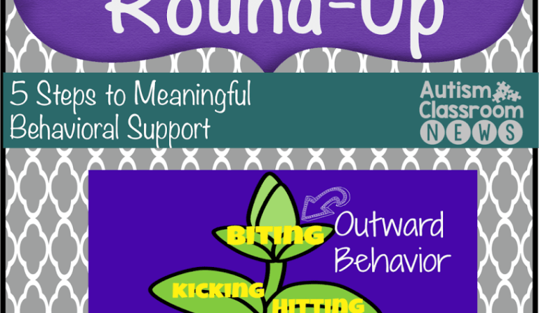 5 Steps to Meaningful Behavioral Support Post Round-Up