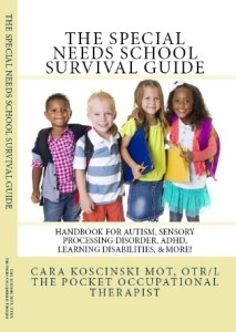 Special needs survival guide