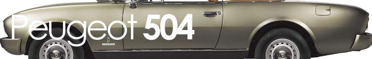 504 banner
