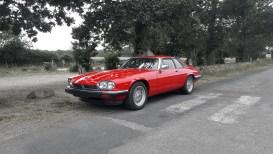 Jaguar XJS 36 3