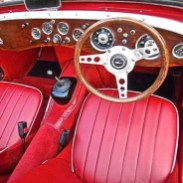 Moquette red Frogeye