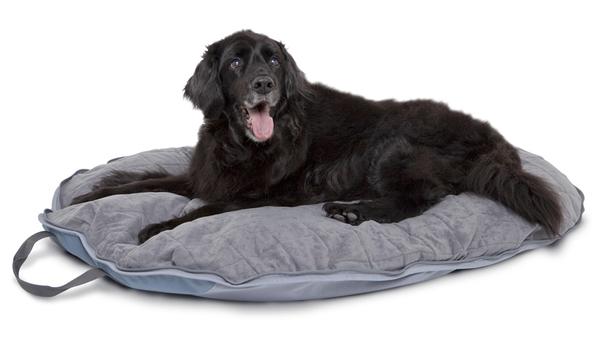 Classic Accessories Dogabout Pet Folding Travel Bed Pet