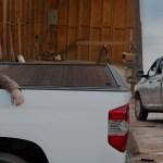 Work Truck Accessories Cargo Van Accessories