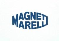 magnetilogo