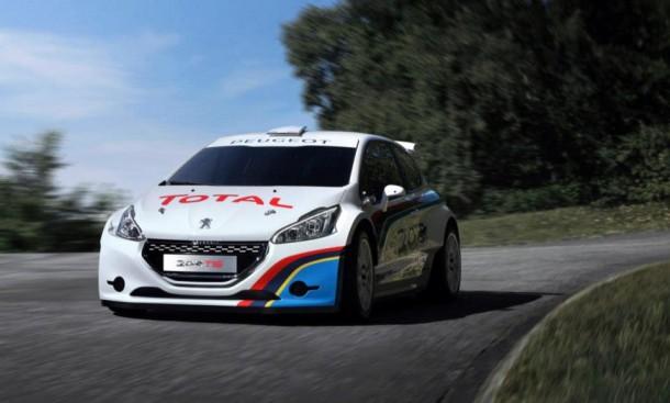 Peugeot 208 T16 (5)