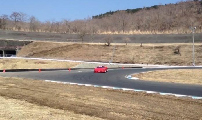 Ferrari F40 drifting