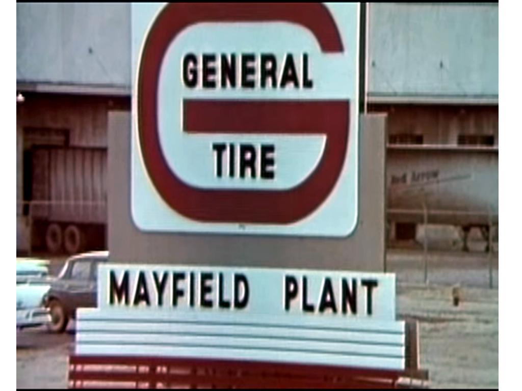 Mayfield Plants