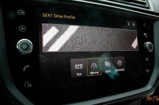 Seat Ibiza FR-30