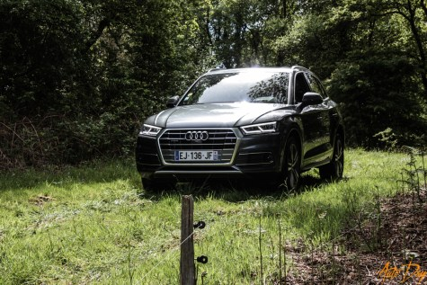 Roadtrip Audi Q5-4