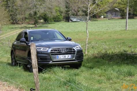 Roadtrip Audi Q5-7