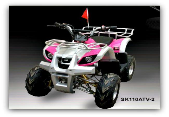 Jonway ATV SK110ATV-2