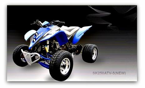 Jonway ATV SK250ATV-5(NEW)