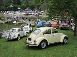 VW Fuscas (10)
