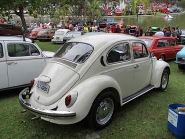 VW Fuscas (5)