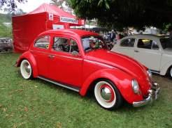 VW Fuscas (8)