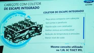 Novo motor Ford 03