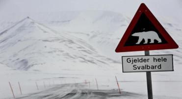 A placa avisa aos motoristas sobre a presença de ursos brancos fora da cidade de Longyearbyen, na Noruega (DANIEL SANNUM LAUTEN/AFP/Getty Images)