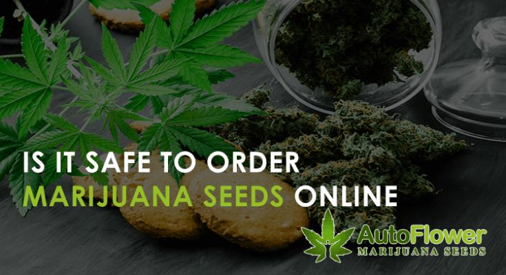 ordering marijuana seeds