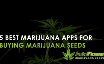 marijuana apps