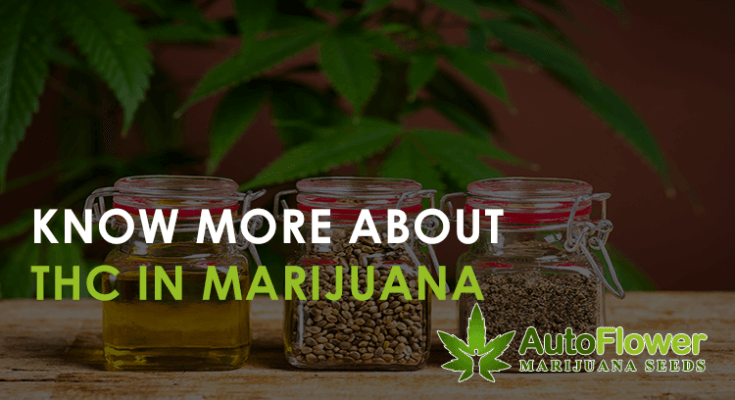 facts about THC